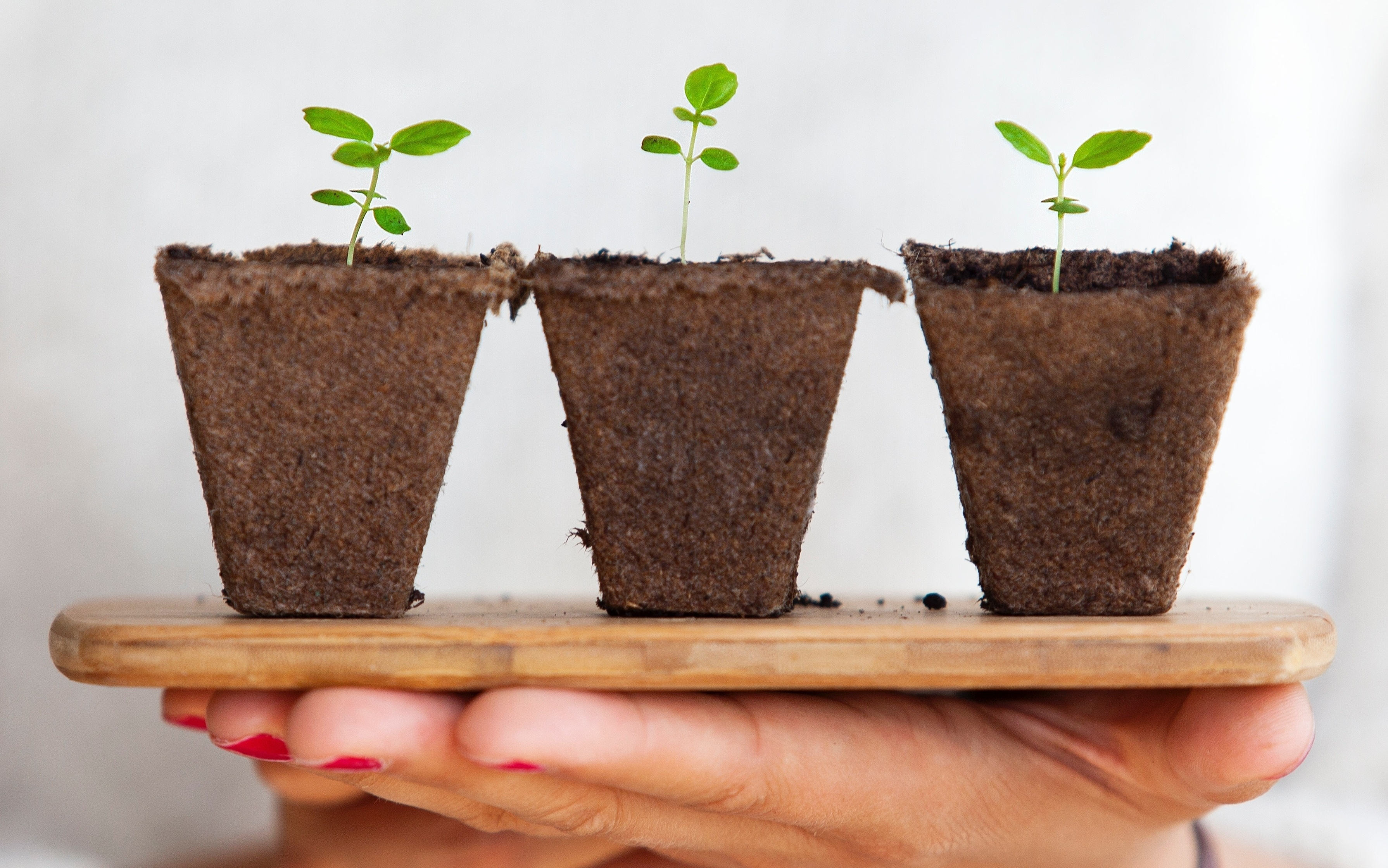 why is lead nurturing so important in B2B