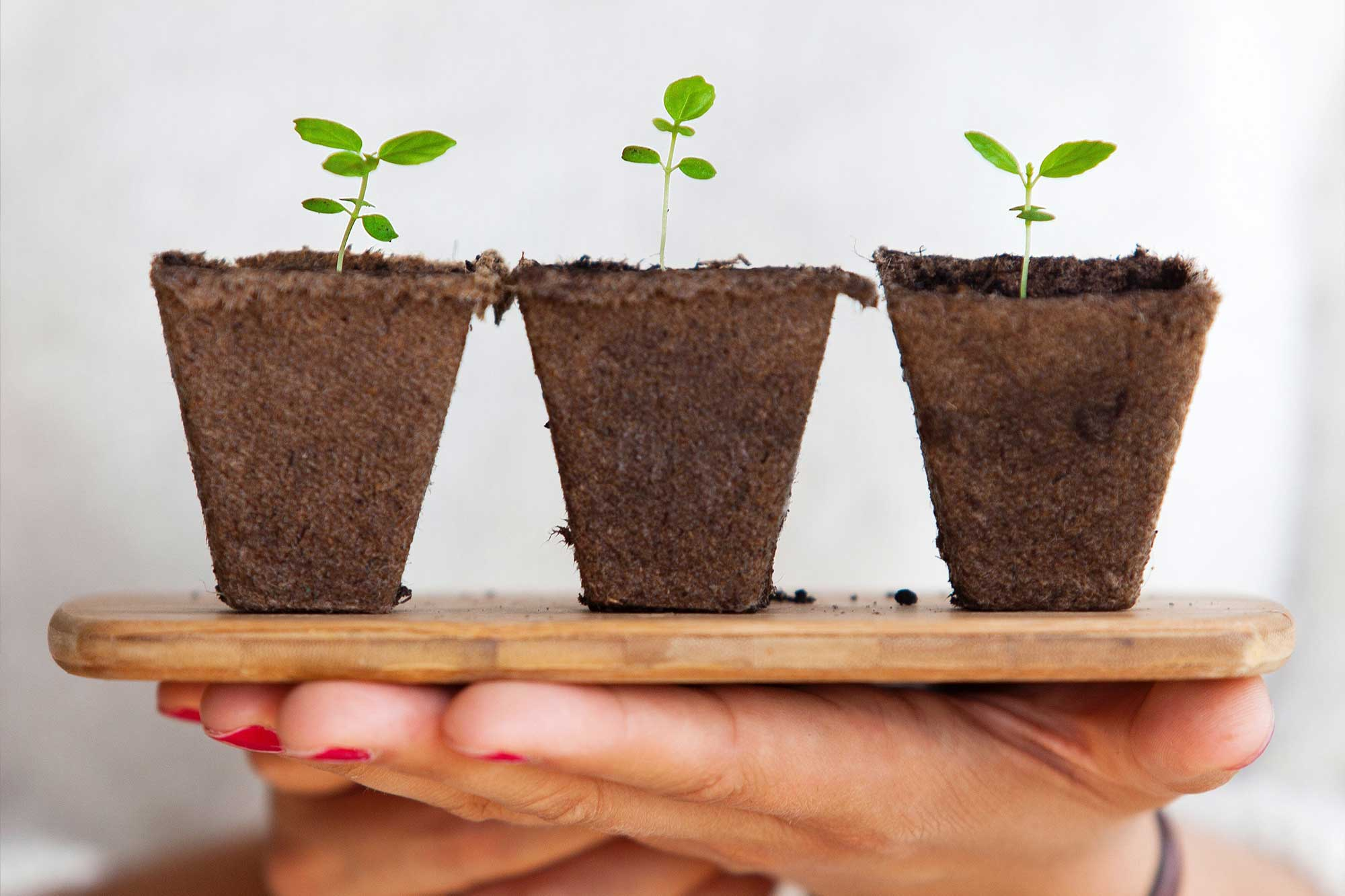 Why Exactly is Lead Nurturing So Important in 2018